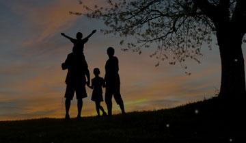 Advocacia Direito da Família